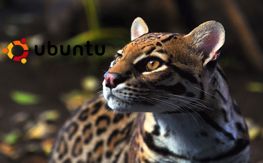 "Download Ubuntu 11.10 ""Oneiric Ocelot"" Beta 1"